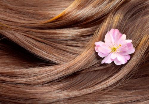 hair-main