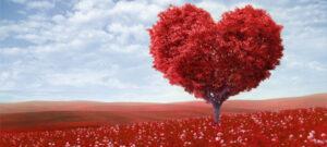 Ritual de amor para San Valentín infalible