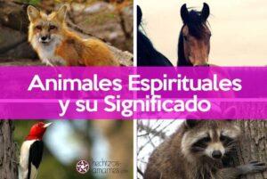 Descubre Tu Animal Espiritual o Familiar